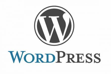adult wordpress themes